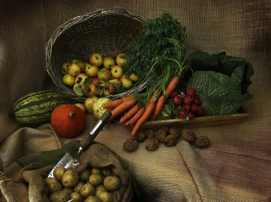 harvest-3679075_1920